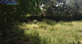 50 by 100 Plot FOR SALE at Kitengela Heights
