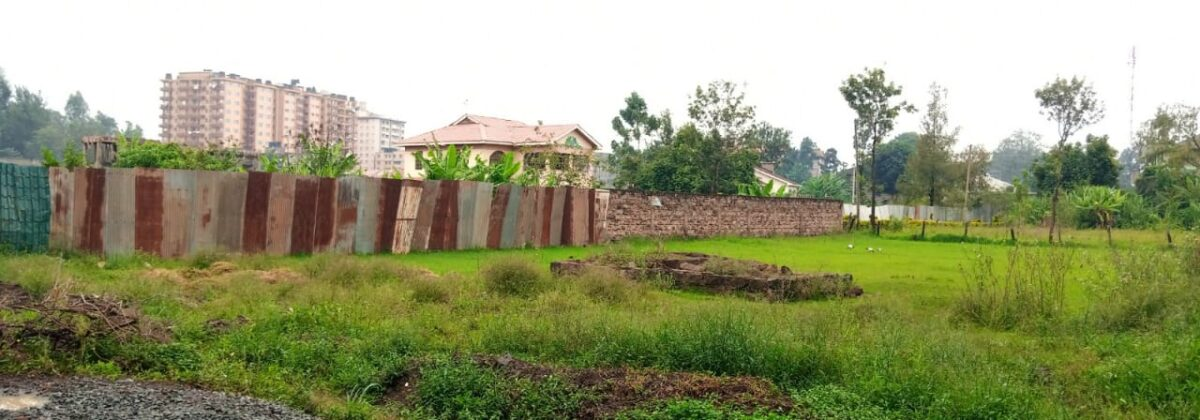 1/2 Acre PLOT FOR SALE, Thome 5