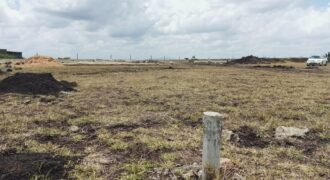 1/4 Acre Land FOR SALE, Viken Thirty, Eastern Bypass